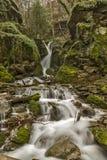 Beautiful view of Leshnishki Waterfall in deep forest, Belasitsa Mountain Stock Photography