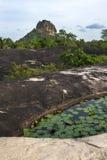 A beautiful view looking from Millagala Rock towards Sigiriya Rock in central Sri Lanka. Stock Image