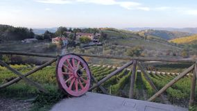 Beautiful view from lookout of hills and valleys of vineyards in Italy at sunset stock footage
