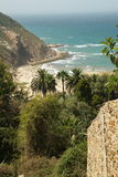 A beautiful view on a moroccan beach with palm trees, mountains Royalty Free Stock Images