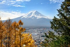 View of Mount Fuji with a beautiful foreground of colorful pine trees from Chureito pagoda viewpoint, Japan. Beautiful view of Mount Fuji with a beautiful stock photography