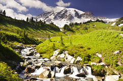 Beautiful view of mount Rainier Royalty Free Stock Image