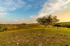 Beautiful view mountain Stock Photos