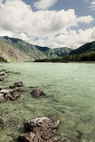 Beautiful view of mountain river in summer Royalty Free Stock Photo