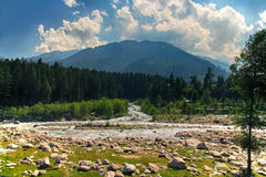 Beautiful view of mountain river in summer Stock Photo