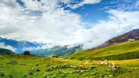 Beautiful view on mountain valley on bright summer day. Wild mountains nature. royalty free stock photos