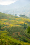 Beautiful View of mountains contain terraced fields Stock Photo