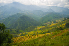 Beautiful View of mountains contain terraced fields Royalty Free Stock Photography