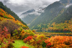 Beautiful view of mountains in fog, colorful fall forest and lak Stock Photography