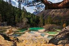 The Multi-colored pond in the Huanglong Scenic and Historic Interest Area, China. Beautiful view of the Multi-colored pond in the Huanglong Scenic and Historic stock images