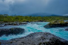 Beautiful view o turquoise water flowing in Petrohue River, Llanquihue Province, Los Lagos Region, Chile.  stock photos