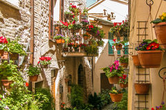 Beautiful View Of Charming Floral Streets In Spello Royalty Free Stock Photo
