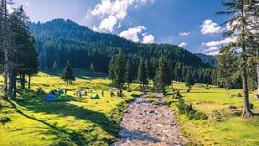 Free Beautiful View Of Mountain River In Summer. Ialomita River, Romania, Europe. Carpathian Mountains, Bucegi Natural Park. Beauty Royalty Free Stock Photography - 107120607
