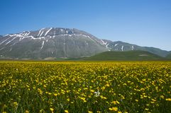 Italian mountain village Castelluccio. Beautiful view of the old italian mountain village Castelluccio, picturesque Apennine landscape, Norcia, Italy Royalty Free Stock Images