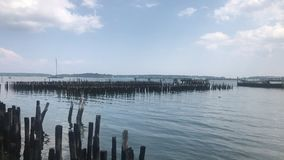 Beautiful View of Old Pier Posts Pilings under a Blue Sky Ocean Gateway Pier. Portland Harbor - Maine, USA stock footage