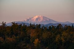 View of Ontake mountain in sunset time. Beautiful view of Ontake mountain in sunset time with a pine trees foreground in autumn stock images