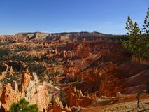 View over Bryce Canyon, Utah, USA Royalty Free Stock Photo