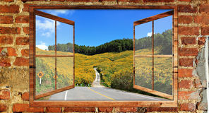 Beautiful view over a window. Of Wheat field Stock Photography