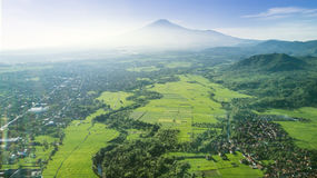 Beautiful view of paddy field and village Stock Photography