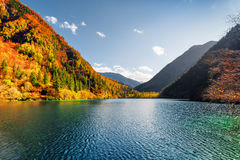 Beautiful view of the Panda Lake among colorful fall forest Stock Images