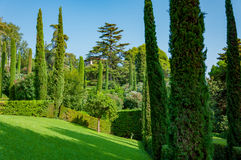 Beautiful view of the park with bright greenery. Beautiful view of the mediterranian park with bright greenery Royalty Free Stock Photos