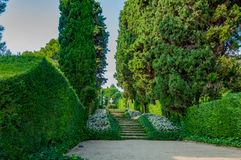 Beautiful view of the park with bright greenery. Beautiful view of the mediterranian park with bright greenery Stock Images
