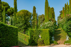 Beautiful view of the park with bright greenery. Beautiful view of the mediterranian park with bright greenery Royalty Free Stock Photo
