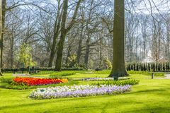 Beautiful view of a park with green grass, trees, paths and red, white, yellow and lilac flowers stock images
