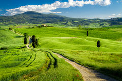 Beautiful view of the path between the fields in Tuscany Royalty Free Stock Photo