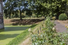 Beautiful view of a path with leafy trees and a green water channel beside. On a wonderful and sunny day in the Eijsden castle in South Limburg in the stock photo