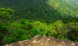 Beautiful view from peak of cliff at the mountain in tropical forest background . Ecosystem and healthy environment. Concept Royalty Free Stock Image