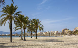 Beautiful view of Platja de Palma de Mallorca Royalty Free Stock Photography