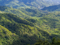 The beautiful view point at Phu tup berk Royalty Free Stock Photography