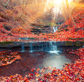 Beautiful view of the pure water waterfall in autumn woodland. Stock Photography