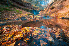 Beautiful view of the pure water waterfall in autumn woodland. Royalty Free Stock Image