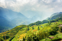 Beautiful view of rice terraces at highlands, Sapa, Vietnam Royalty Free Stock Photography