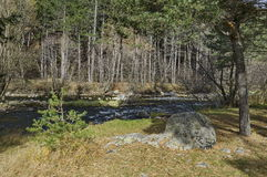 Beautiful view of the  Rila mountain with forest and river Iskar Stock Photography