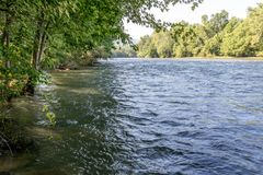 River flowing quickly. Beautiful view of river after rain water level is very high covering some tree bases trees on left in shade trees on right in sun stock photos