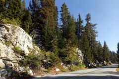 Beautiful view of the road, forest, mountains in Yosemite Park royalty free stock photography