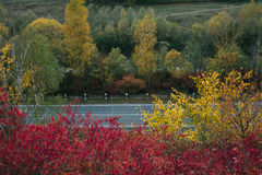 Beautiful view of the road from a height. autumn Royalty Free Stock Images