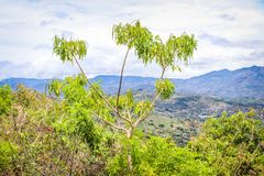 Beautiful view of rural landscape. costa rica under cloudy sky. Stock Photography