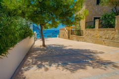 Beautiful view of Sant Elm City, quaint shopping street in the small town of San Telmo, Mallorca with a tree in front. In Spain Stock Photography