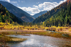 Beautiful view of a semi-marsh lake among wooded mountains Stock Images