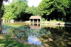 Pond, and a wash house, and water lilies stock image