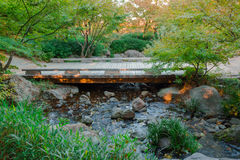 Beautiful view of a small wooden bridge. Stock Photography