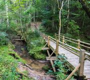 Beautiful view of a small wooden bridge over a stream in the forest in Gauja National Park in Latvia royalty free stock images