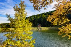 Beautiful view of small wooden house on bank of lake near forest during autumn stock photo