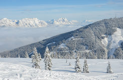 Beautiful view of the snow-covered spruces, mountains and low clouds in winter Stock Image