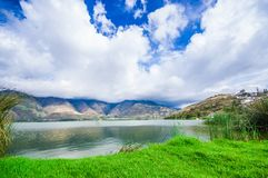 Beautiful view of some typical plants in the beautiful lake in Yahuarcocha , with a gorgeous cloudy day with the. Mountain behind in Ecuador Stock Photo