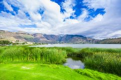 Beautiful view of some typical plants in the beautiful Yahuarcocha lake, with a gorgeous cloudy day in Ecuador.  Royalty Free Stock Photo